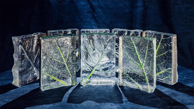 Auhinnad klaasikunstnik Eeva Käsper-Russakult. Foto: Janek Marga